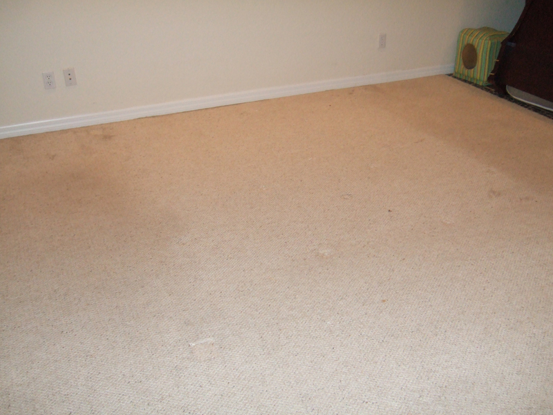 Carpet Cleaning Service Jacksonville Fl